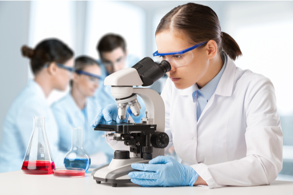Science Foundation Programme To Receive Funding